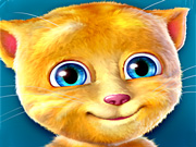 Play Talking Ginger Online